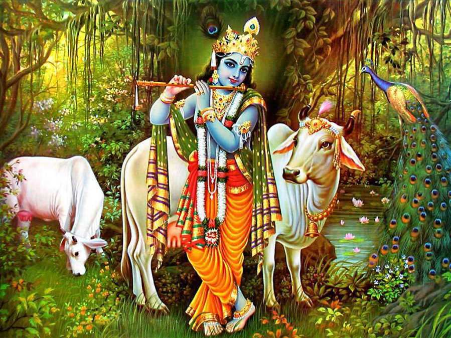 Rituals & Mantra To Worship Cows, Cow Puja