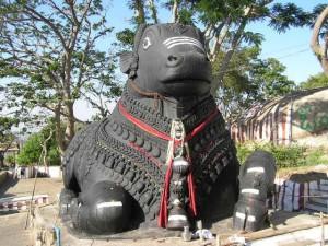 Nandi Bull Vehicle of Lord Shiva Signifiance