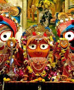 Char Dham Yatra Package - India Pilgrim Package - Puri Jagannath