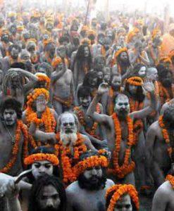 Ardh Kumbh Mela - Haridwar Kumbh Mela 2016