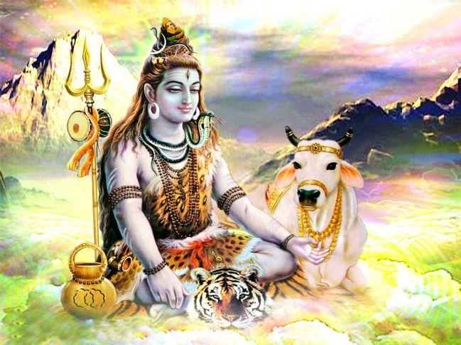 Shankara Meaning